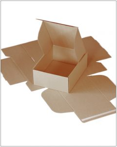 Cardboard Postal Packing Carton